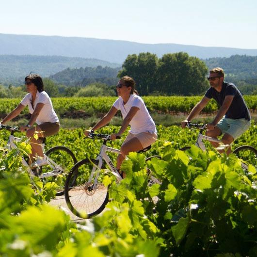 Provence by bike